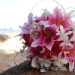 Tropical mix with pink stargazers