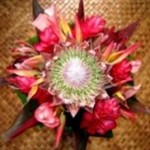 Tropical mix with king protea