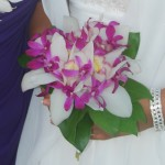 Tropical mix with purples and whites