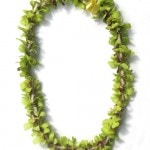 Single green orchid green lei